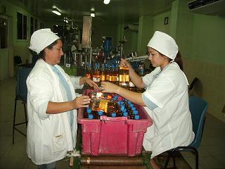 20150416150945-pict0010-trabajadores2.jpg