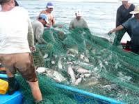 20150720144242-pescadores.jpeg